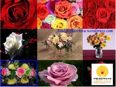 مجموعة من الصور وخلفيات الزهوروالورود