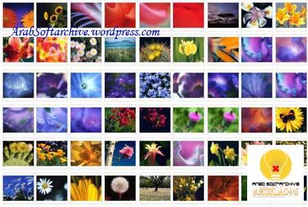مجموعة مميزة من صور وخلفياتالأزهار/Wallpapers